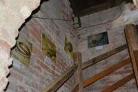 Život v krajině staletých dubů - výstava na zámecké věži