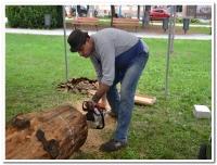 Břeclavské dřevosochání 2017